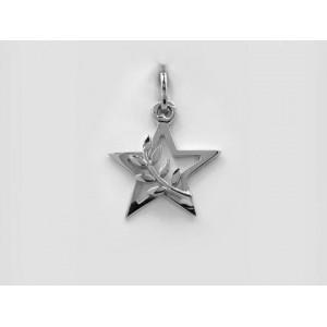Pendentif symbolique étoile & branche d'accacia