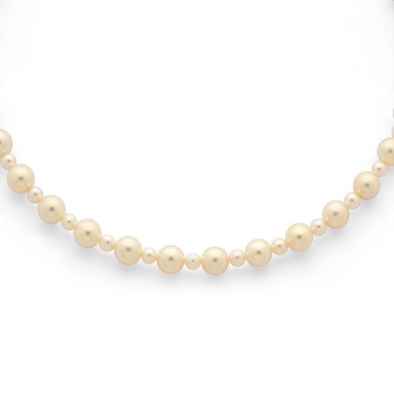 Collier Perles de culture Akoya Japon Chocker Or jaune