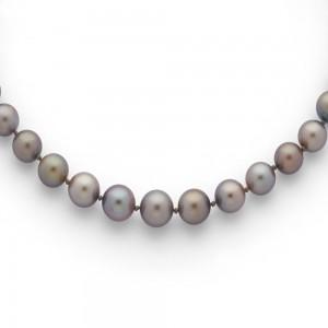 Collier Perles de culture de Tahiti 7,4-10,1mm chute Or jaune